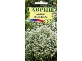 Анафалис Белые шары* 0,01 г
