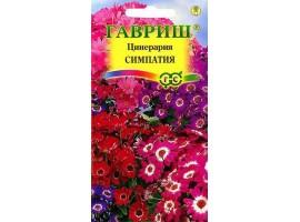 Цинерария цветущая гибридная Симпатия* 10 шт.